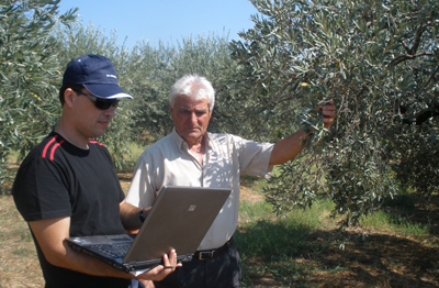Olive farmer Vardias Eleftherios at his field with Agroquality expert